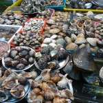 Busan - Marché au poisson