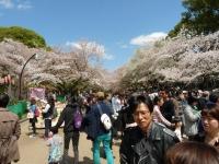 Park Ueno 9