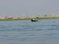 Pêche sur le lac Inle -5