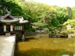 Changgdeokgung Palace - Le jardin secret 2