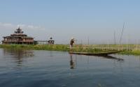Pêche sur le lac Inle -12