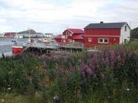 Norvège 2007-074