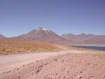 CHILI (5)